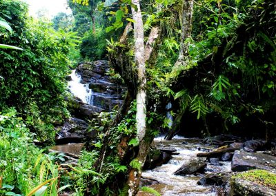 amani-falls